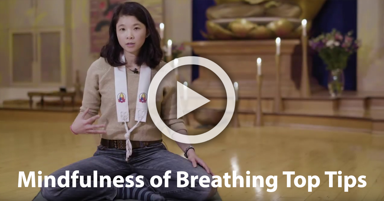 Mindfulness of Breathing Top Tips